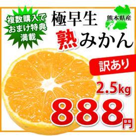 ご自宅用に!! 訳あり極早生熟みかん2.5kg-小玉だから旨味が凝縮-熊本県産【2セット購入で送料無料 3セット以降はおまけ付】