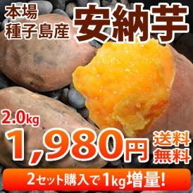 安納芋 送料無料 種子島産 生芋  2箱購入で1kg増量  まるでスイーツ さつまいも 別途東北200円 北海道400円 沖縄離島1000円