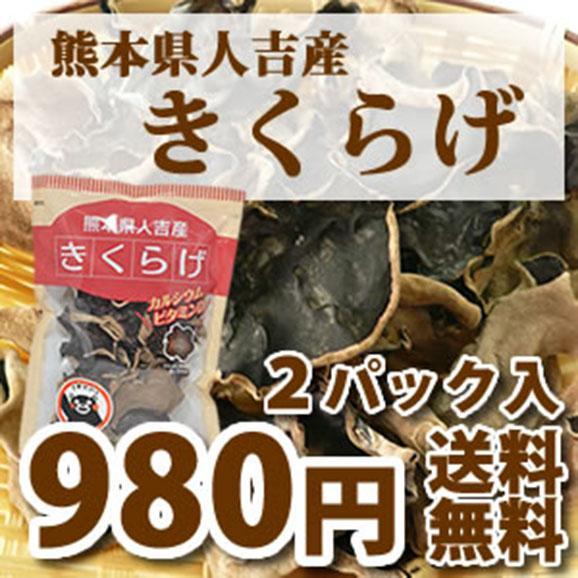 【希少な国産!】熊本県人吉産 乾きくらげ01
