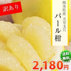 パール柑 訳あり 5kg 送料無料 2箱購入でおまけ増量 熊本県産ご自宅用 文旦