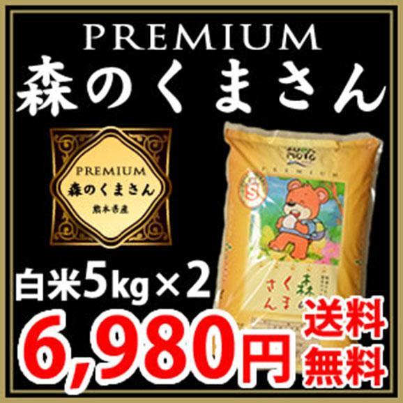 【Sランク認証】熊本県産 プレミアム森のくまさん 白米5kg×2(計10kg)【送料無料】01