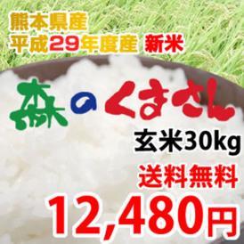 《29年産新米》 熊本県産 森のくまさん 玄米30kg【送料無料】