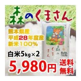 《28年新米》 熊本県産 森のくまさん 白米5kg×2 (計10kg) 【送料無料】