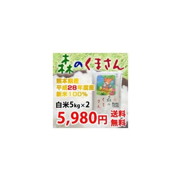 《28年新米》 熊本県産 森のくまさん 白米5kg×2 (計10kg) 【送料無料】01