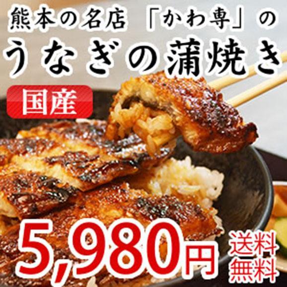 熊本の名店「かわ専」のうなぎ蒲焼き(かばやき)国産01