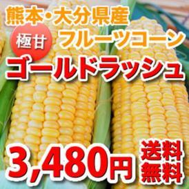 朝もぎ 極甘フルーツコーン「ゴールドラッシュ」 約4kg(10~13本) 熊本・大分県産 <送料無料>