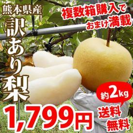 訳あり梨 約2.0kg入り 送料無料 2箱購入以降はオマケ有り 熊本県産 豊水 幸水 秋月 新高