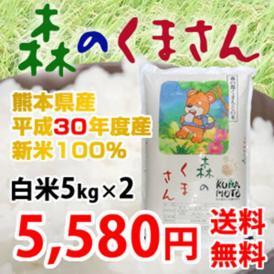 森のくまさん 30年産新米 熊本県産  白米 5kg×2 計10kg 送料無料