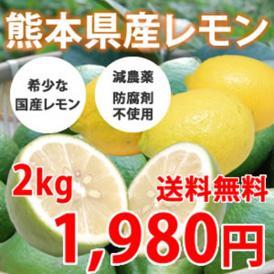 レモン 希少な国産 熊本県三角産 2kg れもん 檸檬