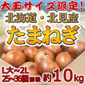 """【送料無料】北海道 北見F1 """"たまねぎ"""" 秀品 約10kg 大玉L~LLサイズ 玉葱"""