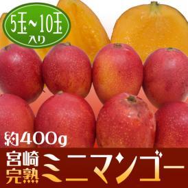 あの濃厚な甘さが早くも味わえます♪宮崎完熟マンゴー!