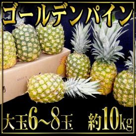"""【送料無料】フィリピン産 """"ゴールデンパイン"""" 大玉 6~8玉 約10kg"""