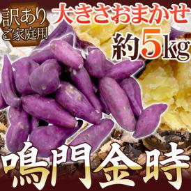 """徳島県産 """"鳴門金時"""" 訳あり 約5kg 大きさおまかせ さつまいも【予約 9月以降】"""