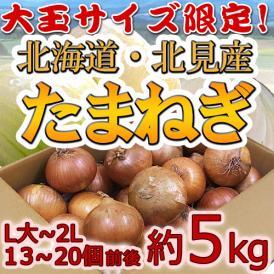 """【送料無料】北海道 北見F1 """"たまねぎ"""" 秀品 約5kg 大玉L~LLサイズ 玉葱"""