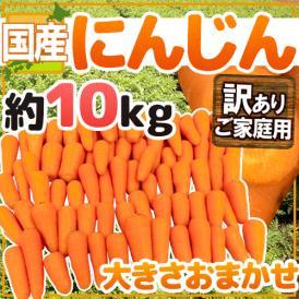 """【送料無料】国内産限定!産地おまかせ 訳あり """"にんじん"""" 約10kg"""