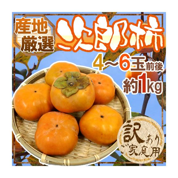 """""""次郎柿"""" 訳あり 4〜6玉前後 約1kg"""