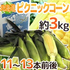 """【送料無料】北海道産 """"ピクニックコーン"""" 11~13本前後 約3kg 極甘とうもろこし【予約 8月中下旬~9月】"""