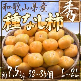 """【送料無料】和歌山産 """"たねなし柿"""" 秀品 L~2Lサイズ 32~36玉 約7.5kg【予約 10月以降】"""