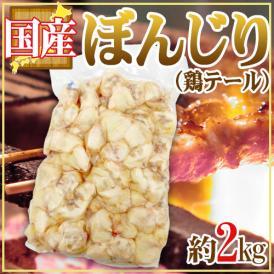 """国産 """"ぼんじり(鶏テール)"""" 約2kg"""