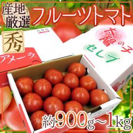 """""""フルーツトマト"""" 約900g~1kg 3箱購入で送料無料!アメーラ・ブリックスナイン・太陽の子セレブのいずれかでお届け【予約 入荷次第発送】"""
