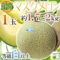 """静岡県 """"マスクメロン"""" 等級白以上 大玉1玉 約1.7~2kg《2玉購入で送料無料》【予約 6月以降】"""