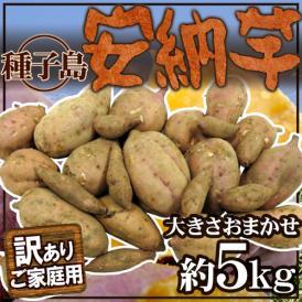 """【送料無料】種子島産 """"安納芋"""" 訳あり 約5kg 大きさおまかせ【予約 10月下旬以降】"""