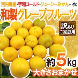 """【送料無料】""""和製グレープフルーツ"""" 訳あり 約5kg 大きさおまかせ【予約 4月以降】"""