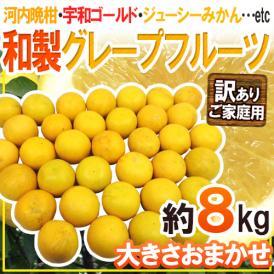 """【送料無料】""""和製グレープフルーツ"""" 訳あり 約8kg 大きさおまかせ【予約 4月以降】"""