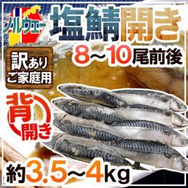 """【送料無料】ノルウェー """"塩鯖開き"""" 訳あり 8~10尾前後 約3.5~4kg 背開き 塩サバ"""