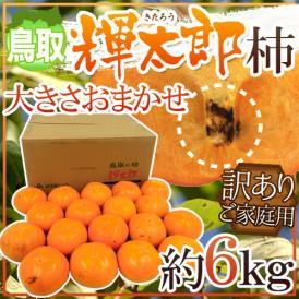 """鳥取産 """"輝太郎柿"""" 訳あり 約6kg 大きさおまかせ【予約 10月以降】 送料無料"""