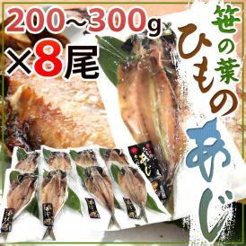 """【送料無料】""""笹の葉ひもの あじ"""" 約200~300g×8尾 鯵の干物"""