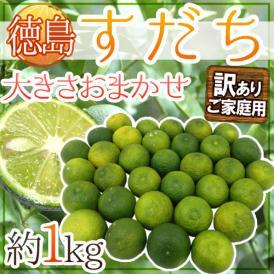 """徳島産 """"すだち"""" 訳あり 約1kg 大きさおまかせ"""