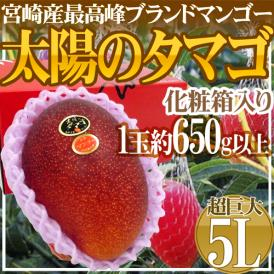 """宮崎完熟マンゴー """"太陽のタマゴ"""" 超巨大5L 約650g以上 1玉【予約 4月下旬~6月】"""