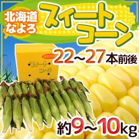 """【送料無料】北海道 JA道北なよろ 高糖度とうもろこし """"スイートコーン"""" 22~27本前後 約9~10kg【予約 8月中下旬~9月】"""