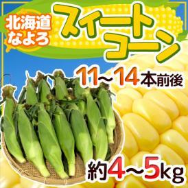 """【送料無料】北海道 JA道北なよろ 高糖度とうもろこし """"スイートコーン"""" 11~14本前後 約4~5kg【予約 8月中下旬~9月】"""