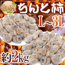"""【送料無料】""""ちんと柿"""" L~3L 約2kg 中国産【予約 入荷次第発送】"""
