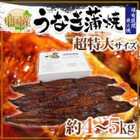 """【送料無料】""""うなぎ蒲焼"""" 約5kg 中国産 ウナギ/鰻/有頭腹開"""