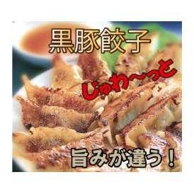 鹿児島 /黒豚餃子/ ぎょうざ 旨いの間違いなし!