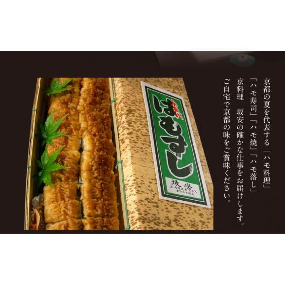 ハモ寿司01
