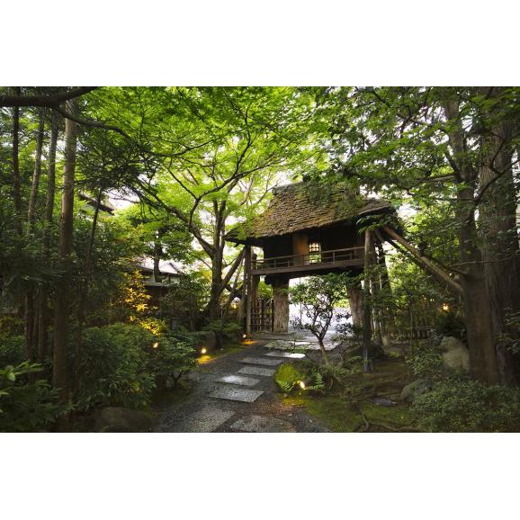 販売を終了しました 9月25日開催 京都料理芽生会『月見の宴』イベントチケット03