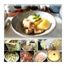 鶏じゃがの和風煮 1袋 敬老の日 惣菜 お惣菜 おかず お試し セット 冷凍 無添加 お弁当