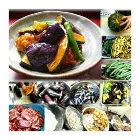 茄子と唐揚南瓜の京風甘辛あんかけ 1パック 敬老の日 惣菜 お惣菜 おかず お試し セット 冷凍 無添加 お弁当