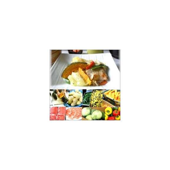 具たくさん肉野菜炒め1パック敬老の日惣菜お惣菜おかずお試しセット冷凍無添加お弁当