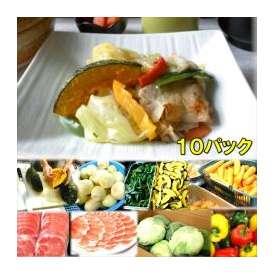 具たくさん肉野菜炒め 10パック 敬老の日 惣菜 お惣菜 おかず お試し セット 冷凍 無添加 お弁当