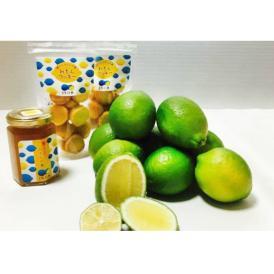 【送料無料】リモーネ生口島 リモーネセット【レモン1kg、クッキー80g×2、レモンマーマレード160g×1】