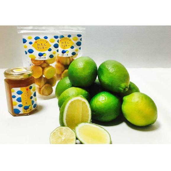 【送料無料】リモーネ生口島 リモーネセット【レモン1kg、クッキー80g×2、レモンマーマレード160g×1】01