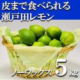 【送料無料】皮まで安全安心な美味しい「生口島レモン」【5kg】