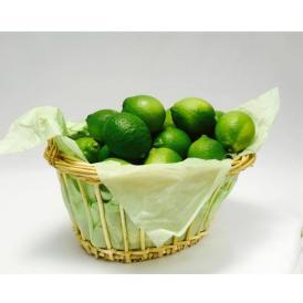 【送料無料】皮まで安全安心な「生口島レモン」【3kg】