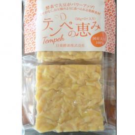 テンペの恵み・生テンペ(2個入り)