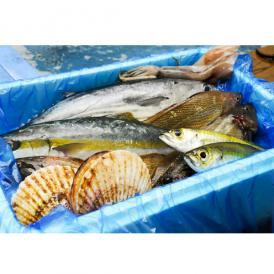 -気仙沼-唐桑漁師さんの鮮魚セット